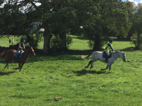 Clonshire Hunter Trials 2018